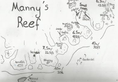 Manny's Reef