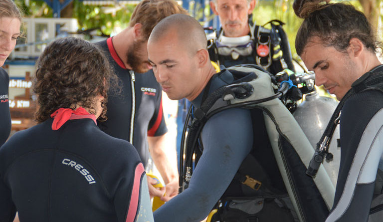 Are you not PADI certified yet?