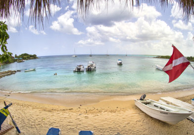 Free pick up from Bayahibe-Dominicus